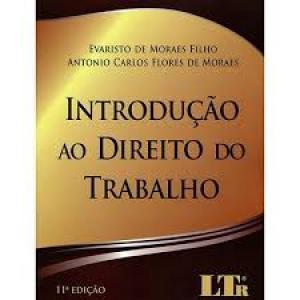 INTRODUCAO AO DIREITO DO TRABALHO
